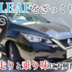 【ゆる動画】日産リーフで行く!ざっくり試乗編 初の電気自動車にいつも以上に興奮する男 Nissan Leaf POV Drive in Tokyo